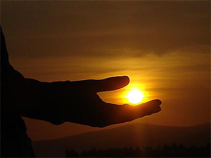 Une petite main qui a capturé un soleil...