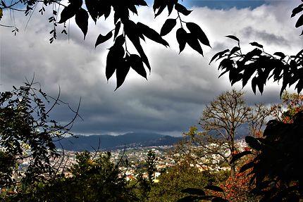 Funchal depuis le jardin Do Mar