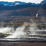 Au milieu des geysers