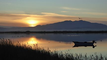 Canigou depuis l'étang de Canet au couchant