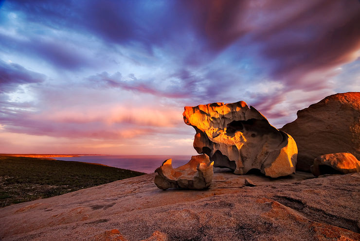Kangaroo Island, une préservation unique