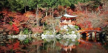 Voyage sur mesure complet au Japon