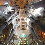 Plafond de la Sagrada Familia