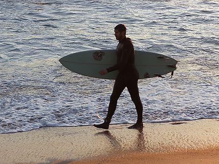 Les amateurs de surf à Sunset beach