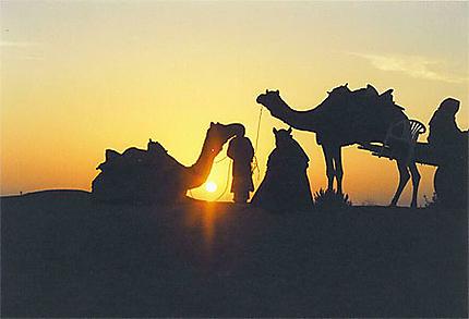Levé du soleil dans le désert du Thar