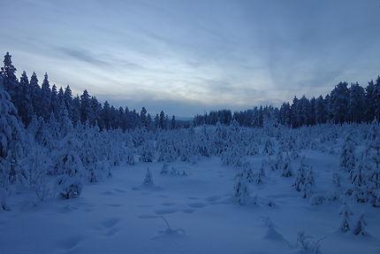 Paysage de Laponie suèdoise