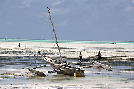 Marée basse à Jambiani