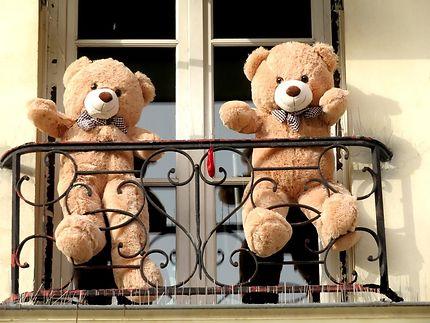Les oursons de la rue Berger