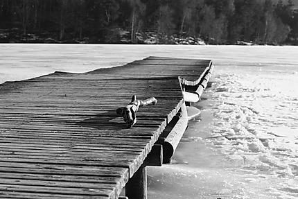 Petit ponton enchassé dans les glaces