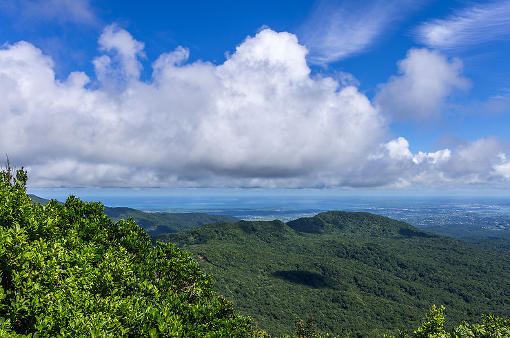 De Vieux Habitants à Deshaies : plongée au cœur de la Guadeloupe