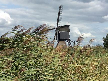 Le vent et le moulin à Kinderdijk