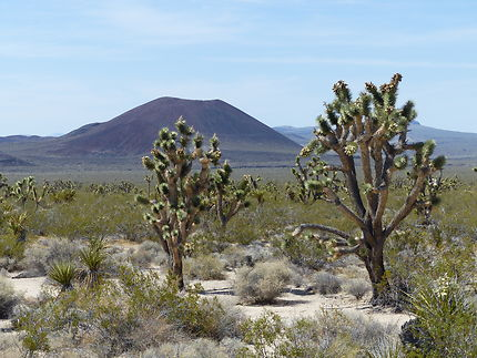 Ancien volcan au Mojave National preserve