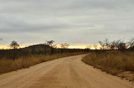 Coucher de soleil sur une route de savane