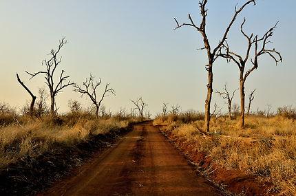 Nous 2, seuls sur cette route au Swaziland !