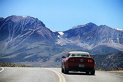 Mustang represents !