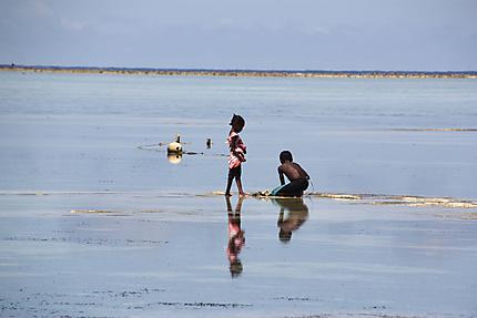 Marée basse à Matemwe