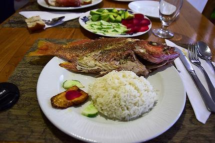 Gastronomie cubaine