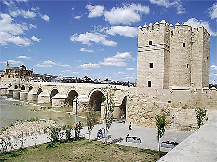 Ancien Pont Romain Ponts Cordoba Cordoue Region De