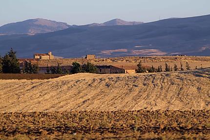 Algérie - Hauts plateaux - Tout est sec !