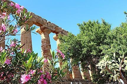 Temple à Agrigente
