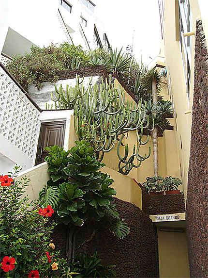 Sculptures florales