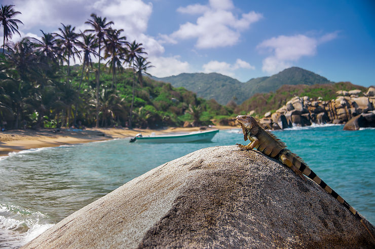 Arrecife, Tayrona – Colombie