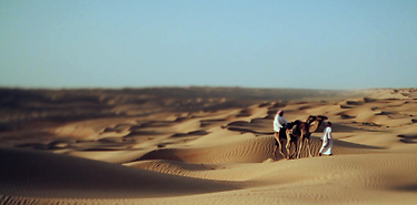 Circuit Oman Grandeur Nature - 9 j / 7 n