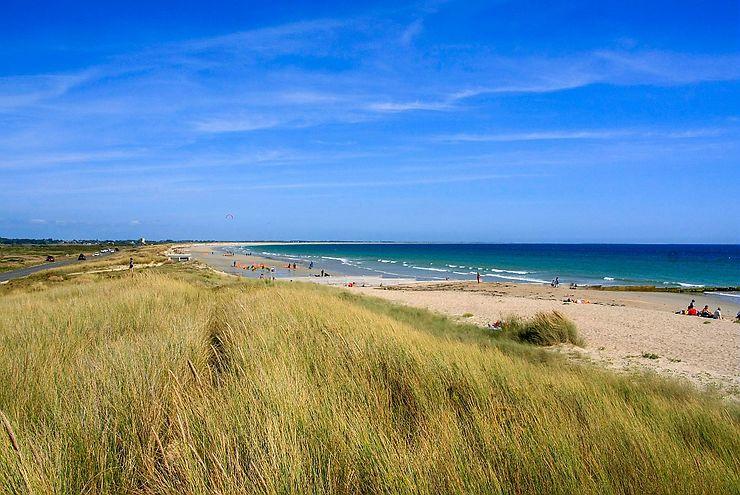 Dunes sauvages de Gâvres à Quiberon (Morbihan)