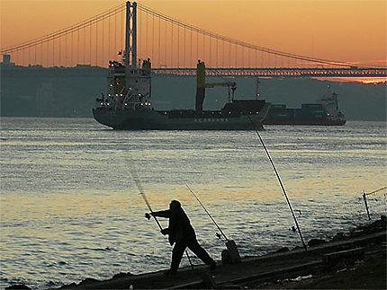 Pêcheur à Lisbonne