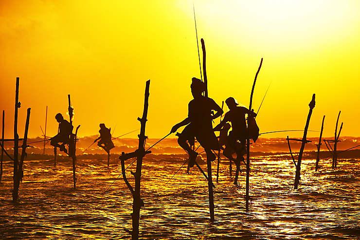 Covid-19 - Sri Lanka : réouverture des frontières aux touristes internationaux