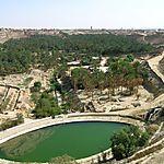 Corbeille de Nefta