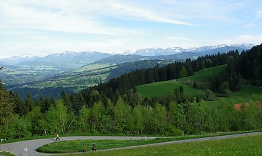 Bregenz (Vorarlberg)