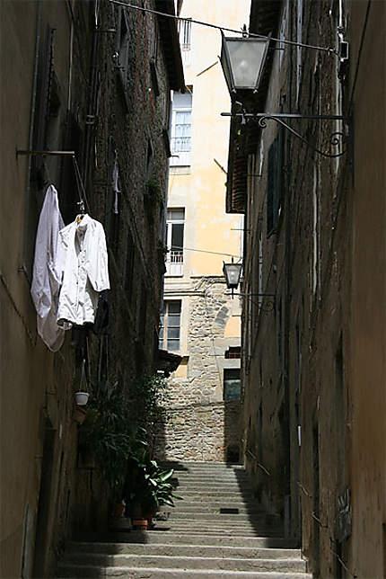 Rue de Cortone