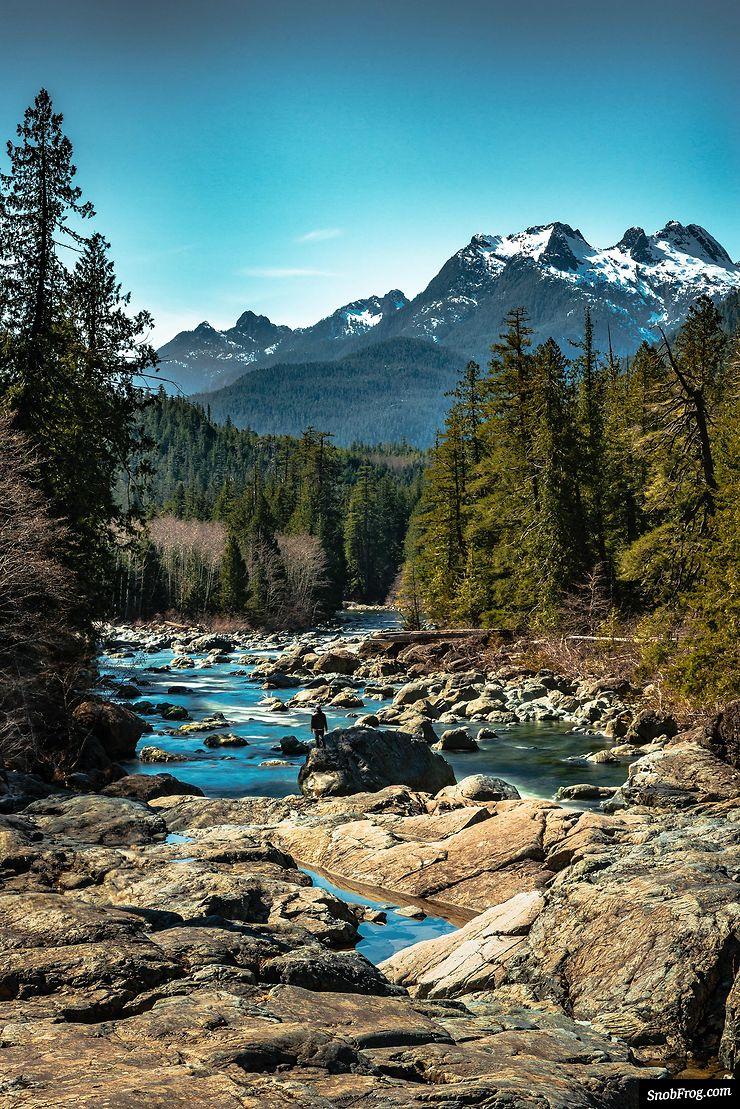 Rencontre entre montagnes et forêts