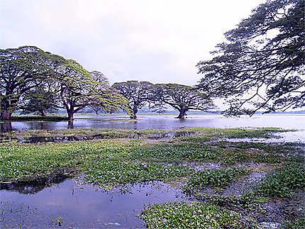 Le lac de Kataragama