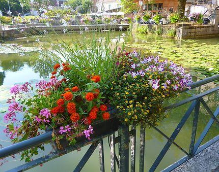 Le canal des Tanneurs, ville de Dole, France