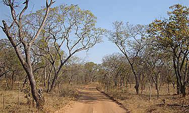 Parc national de Kafue