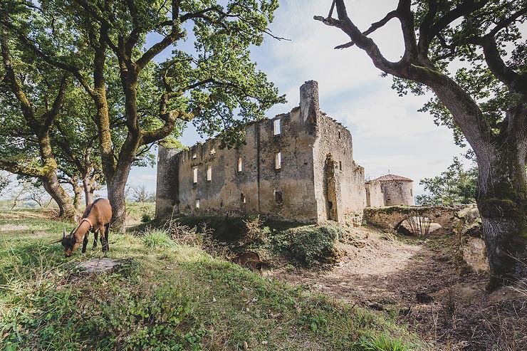 Montfa : le château du père de Toulouse-Lautrec