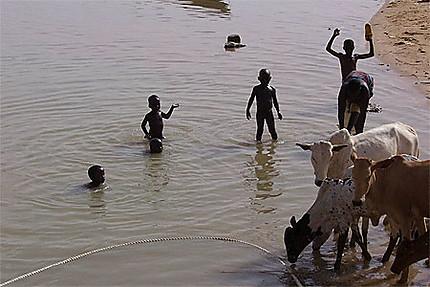 Baignade dans le Fleuve du Niger