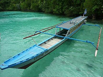Le paradis sur Pulau Malenge