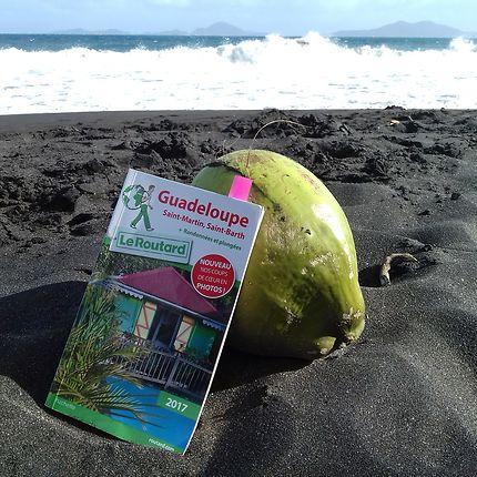 Noix de coco sur plage de sable noire