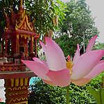 Thaïlande - Les touristes appelés à respecter le deuil national