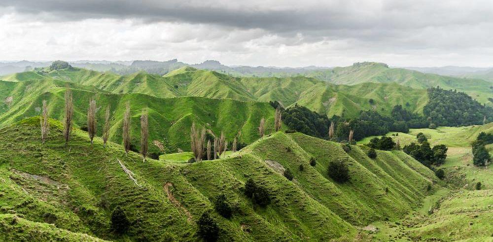 Nouvelle Zélande - les 10 plus belles routes