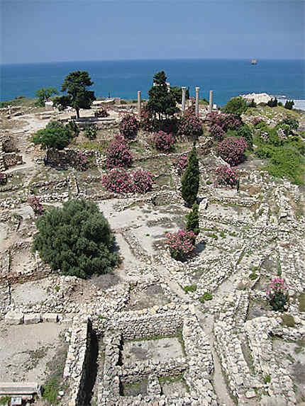 Site antique de Byblos