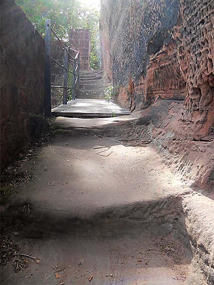 Ruines du Blumenstein