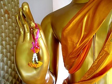 Offrande à Bouddha