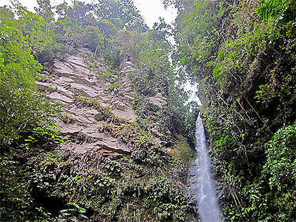 Les chutes de Ahuashiyacu