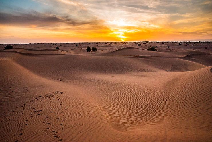 Les dunes vers Mhamid