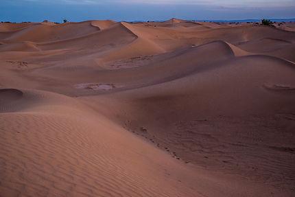 Dunes au coucher du soleil