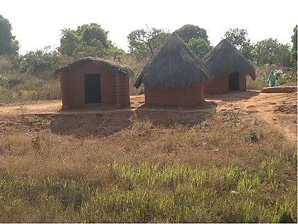 Case traditionnelles Adamaoua